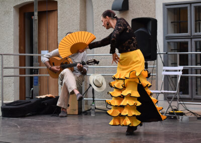 flamenco5